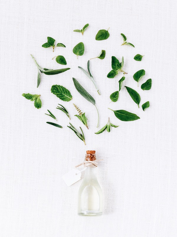 Bottle of essential oil with herb holy basil leaf, rosemary,oreg