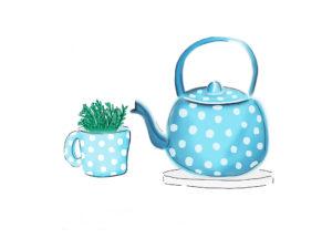 cup-of-green-tea-illustration