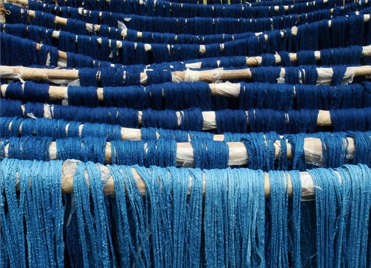 Blue Gold What Is Indigo Dye And Why Is It Good For The