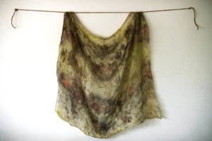 plant based dye