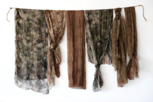 plant based dyeing