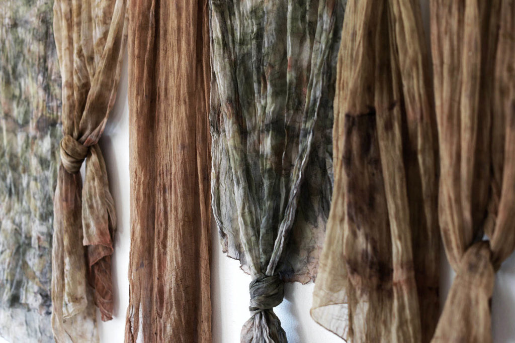 plantbased dyeing