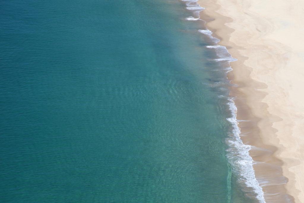 wolrd ocean day