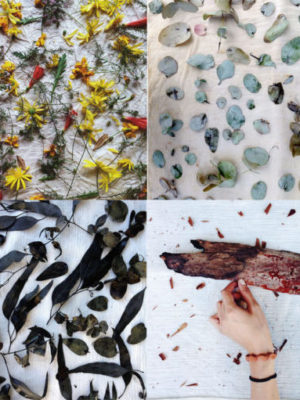 Eco Prints: Learn The Process Of All Natural Eco-Printing
