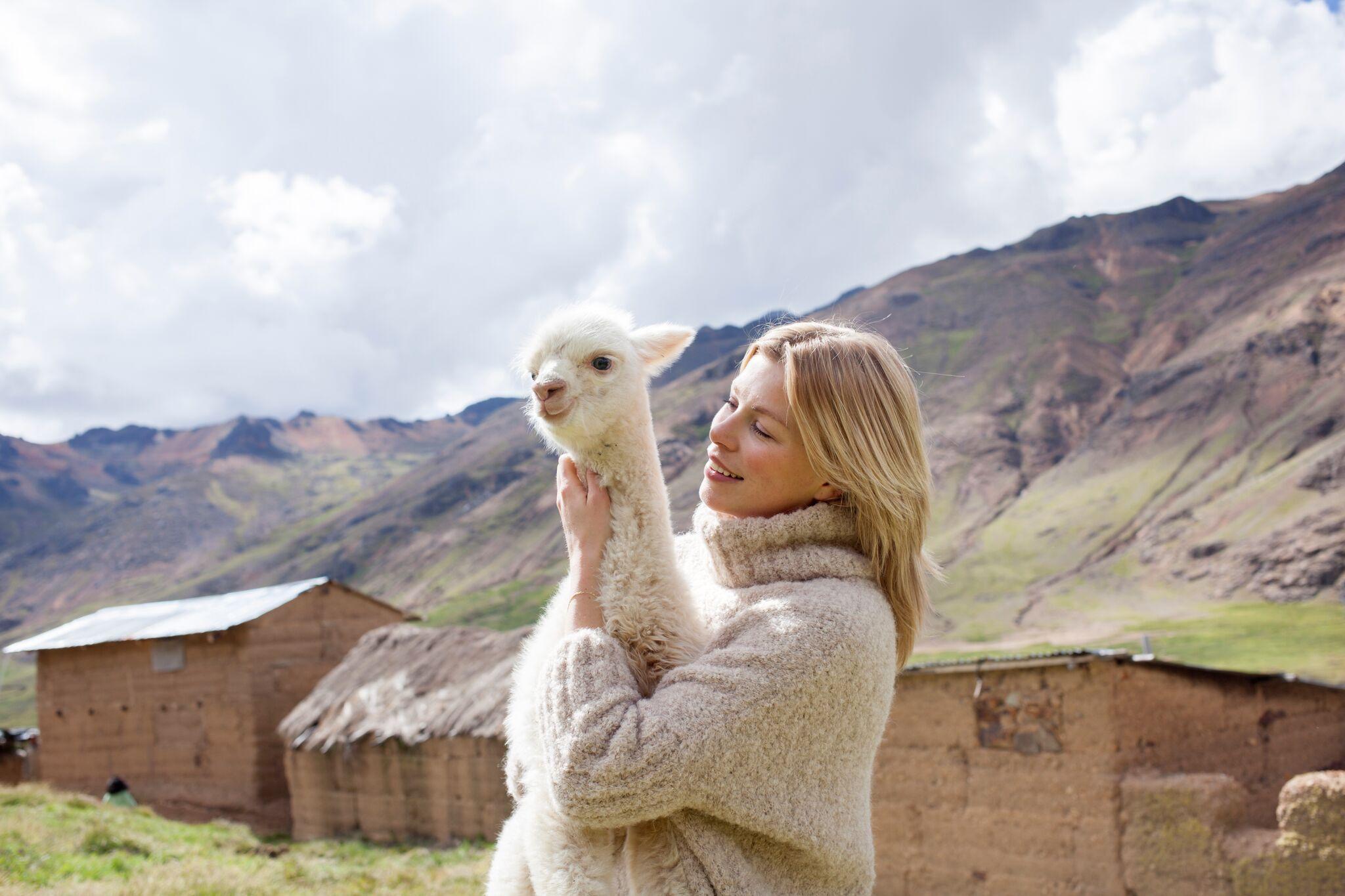 alpaca wool ln knits